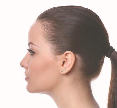 perfil izquierdo